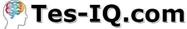 Tes-IQ.com