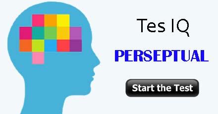 Tes IQ Perseptual