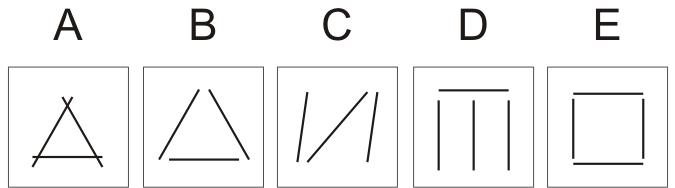 Soal Tes Klasifikasi Gambar 9